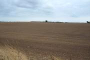 Farmland, New Ellerby