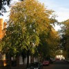 St Mark's Road, Leamington Spa (2)