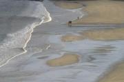 Walking on Norwick beach