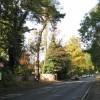 Bus stop, Kenilworth Road, Blackdown
