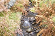 Small unnamed burn above Craig Lodge