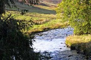 The Megget Water at Cappercleuch