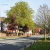 The Coldra, Newport