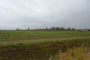 Farmland North of Corporation Farm