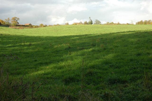 Grazing land near Pow Green