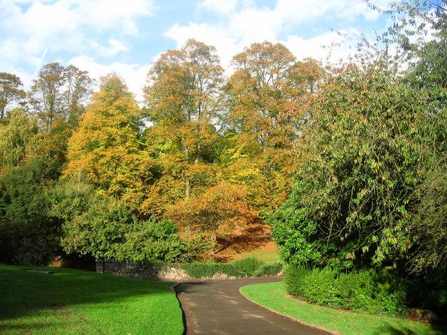 Beechwood Park in Autumn