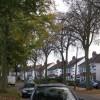 Lime Avenue, Lillington