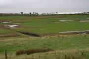 Farmland - flooded fields