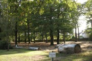Falconwood Cemetery (3) - Conservation Area
