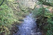 Afon Dyfi at minor road bridge close to Mallywd