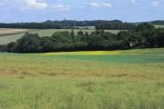 Farmland, Preston Candover