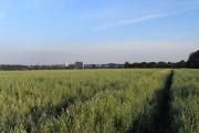 Farmland, West End, Warfield
