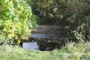 River Windrush downstream from dovecote