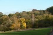 Broxtowe Wood