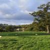 Pastures, Whittington