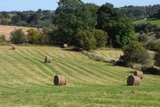 Field with baled hay, Chedworth