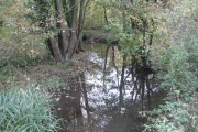River Mimram in Digswell