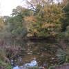 Restored pond, Newbold Comyn Park Royal Leamington Spa