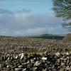 Dry stone walls at Litton