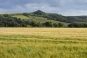 Farmland above Stockley