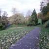 Woodland Park, Newport