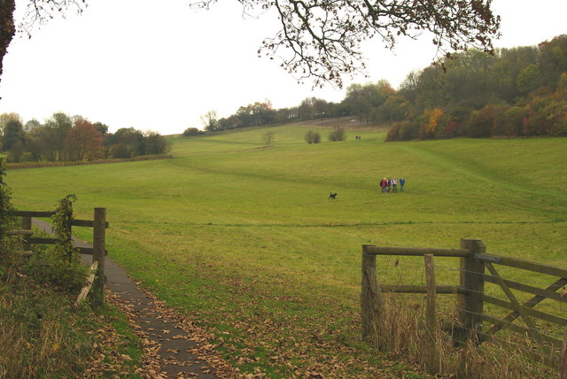 View Towards Banstead Wood