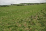 Farmland above Tregardock Cliff