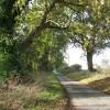 Boundary Road past Craft Plantation