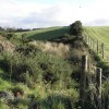 Near Loughmacrory