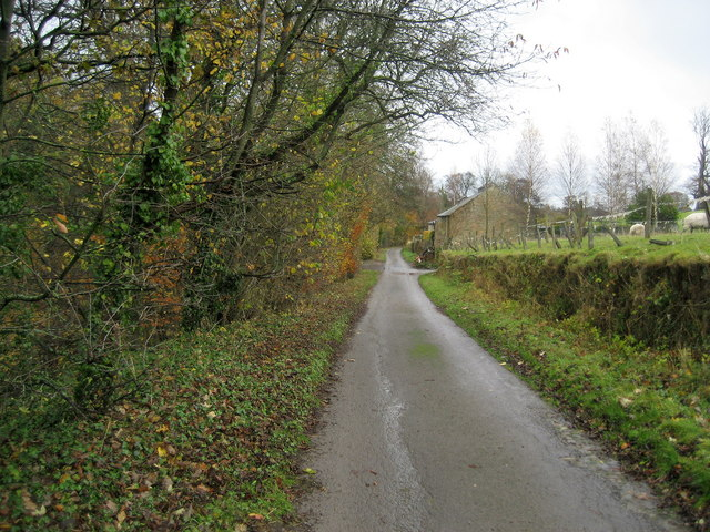 Access Lane by Tees View