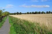 Farmland and footpath, Letcombe Regis