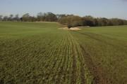 Lelley farmland