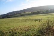 Farmland near Rallt