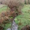 Stream below the Grand Union Canal near bridge 35