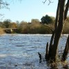 River Ure at Boroughbridge