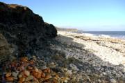 Eroding bank of coal-mine waste, Horden Beach