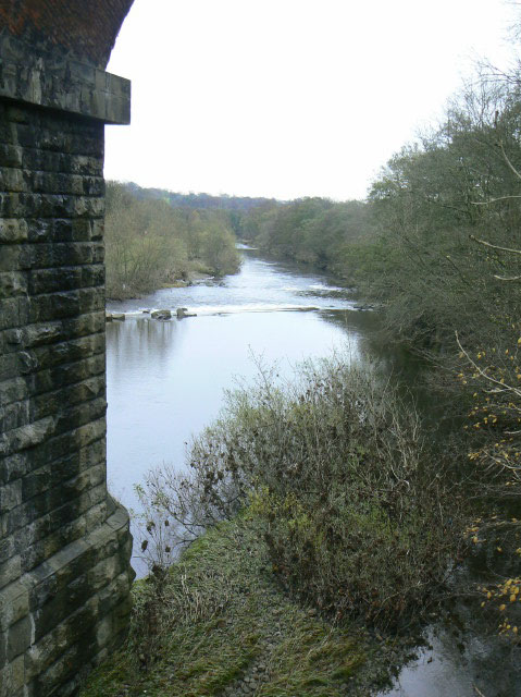 River Wear at Witton Park