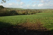 Farmland near Down St Mary
