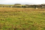 Pasture at Netherton House entrance