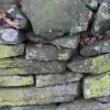 Lichened stone wall