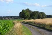 Road, Mapledurham