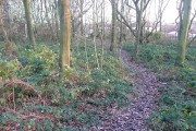Soothill Wood, Soothill
