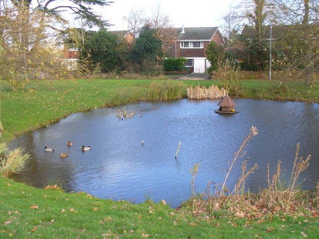 Village Pond, Bisley
