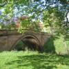 Lealholm Bridge through the trees