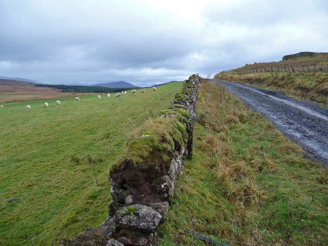 The old road at Skeabost