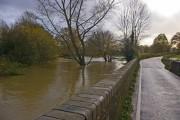 Flooded River Mole at Flanchford Bridge