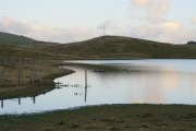 Loch of Freester, South Nesting