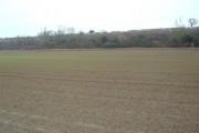 Farmland off Cliffe Road