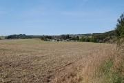 View  WNW towards Melbury Bingham