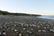 The beach at Blackhall Rocks